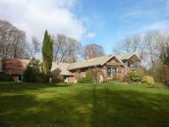 6 bed property in Beech, Near Alton...