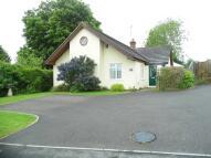 Bungalow to rent in Kings Somborne...