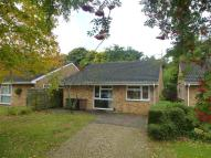 3 bed Bungalow to rent in Tollgate, Bretton...
