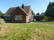 3 bedroom Bungalow in Diss Road, Stanton...