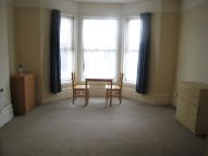 Studio flat to rent in Trinity Road, London, N22