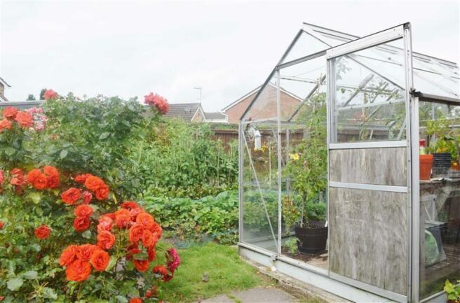 Greenhouse & Veg Pat