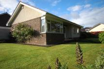 Bungalow to rent in Broadwood Park, Ayr...