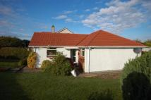 3 bedroom Detached property to rent in Bathurst Drive  , Ayr...