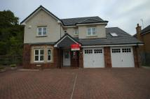 Detached home in Corton Shaw, Ayr...