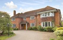 6 bed Detached house for sale in Hyde Lane, Danbury...