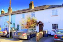 Character Property in Grove Road, Chertsey...