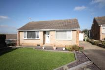 3 bed Detached Bungalow for sale in Meadow Close, Bolsover...