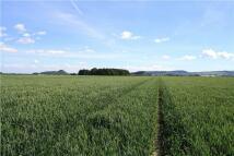 Land in Farmland At Old Keir...