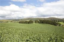 Land for sale in Symington, Biggar...