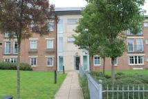 Hospital Fields Road Flat to rent