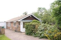 Bungalow for sale in Southfield Close...