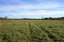Land for sale in Torrington, Devon...