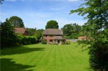 4 bedroom Detached house for sale in Ridgley Road...