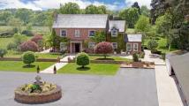 Detached house for sale in Fir Tree Farm...