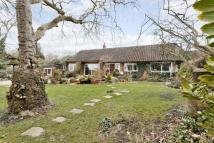 5 bed Detached house in Hall Grounds Drive...