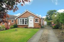 Detached house in Ingleton Drive...