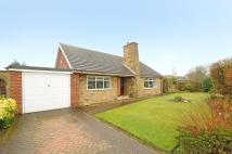 Detached Bungalow for sale in Church Fenton Lane...