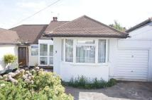 3 bed Semi-Detached Bungalow in Connaught Avenue...