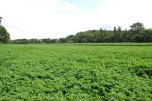 Lot 1: 207.11 acres of arable Land for sale