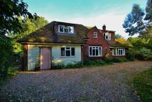 Detached property in Boxted, Colchester, Essex