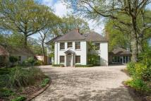 6 bedroom Detached property for sale in Colchester, Essex