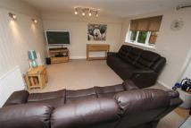 *ROOM TO RENT IN SHARED EXECUTIVE HOUSE Flat to rent