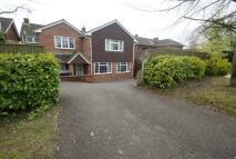 Flat to rent in Salisbury Road, Andover