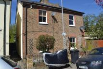 2 bedroom semi detached house to rent in Alfred Road...