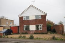 4 bed Detached house to rent in Cedar Close...