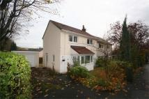 3 bedroom semi detached house to rent in Moncrieff Avenue, Lenzie...