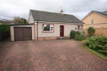 Detached Bungalow to rent in Cairnview Road...
