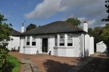 Detached Bungalow for sale in 13 Arthurlie Drive...