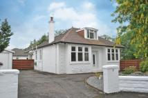 Detached Bungalow for sale in Denholm Drive, Giffnock...