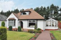 Mearns Road Detached Bungalow for sale