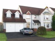 Detached Villa in Darluith Park...