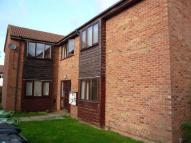 Studio flat to rent in Somerville, Werrington...