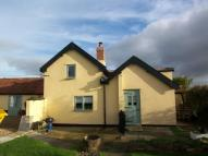 Cottage in Mill Road, Tibenham