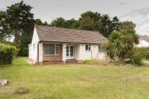 Detached Bungalow to rent in Sandford
