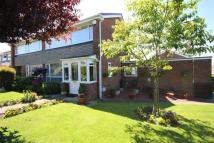 3 bed semi detached home in Sunderland Road...