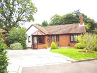 3 bed Detached Bungalow for sale in Dibbinview Grove, Spital...