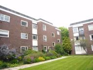 Flat to rent in Lancelyn Court, Spital