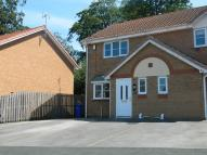 56 Newquay Drive semi detached house to rent
