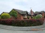 2 bed Detached Bungalow in 16 Oakwood Park, Penley...