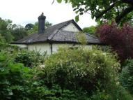 Detached Bungalow for sale in Lodge Hill, Exeter, EX4