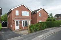 Detached property to rent in Farndale Road...
