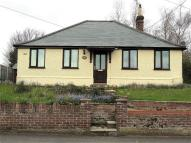 3 bed Detached Bungalow to rent in St. Annes Road, Beccles