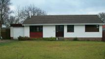 3 bedroom Detached Bungalow to rent in Merrygreen Place...