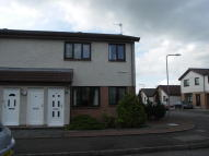 Rugby Road Flat to rent