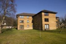 Apartment to rent in Dunchattan Grove, Troon...